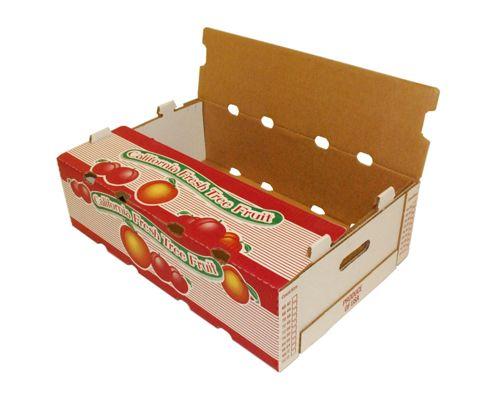 in thùng carton