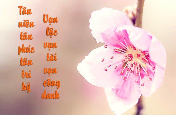 in thiệp tết tại Hà Nội