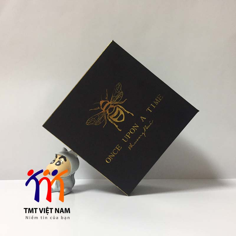 hộp carton lạnh clt10