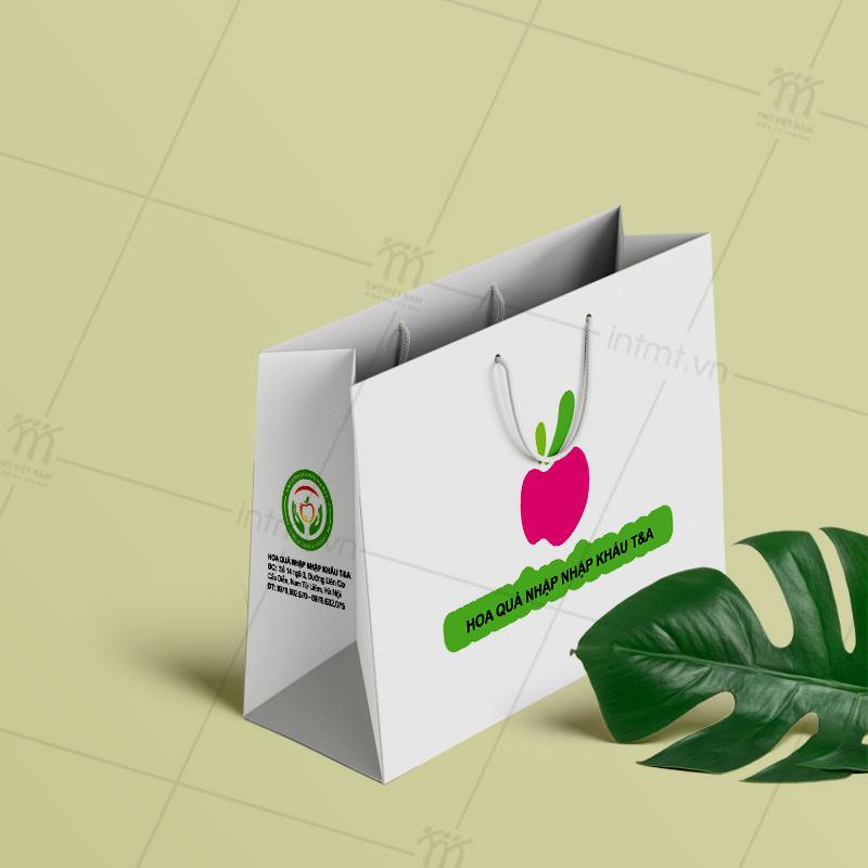 túi giấy đựng hoa quả TG16
