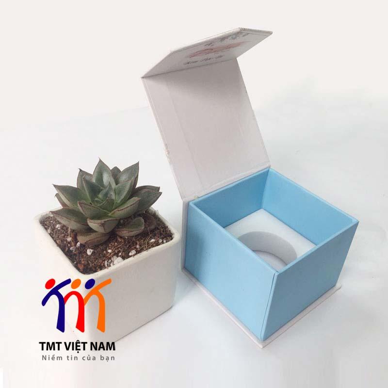 hộp đựng mỹ phẩm kem dưỡng