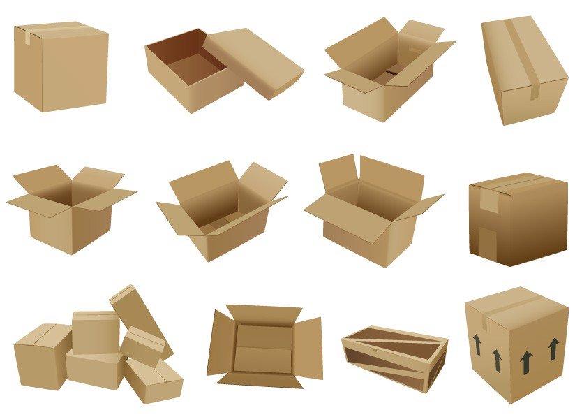 mẫu hộp carton đóng gói vận chuyển
