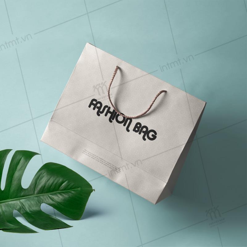 Túi giấy thời trang chất liệu mỹ thuật